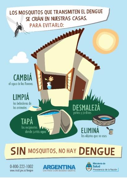 dengue MSN