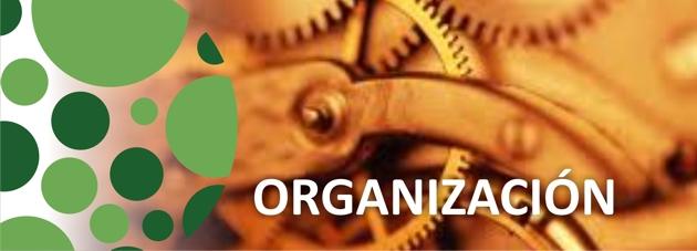 4 Organizacion