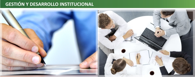 8 Gestion y desarrollo institucional