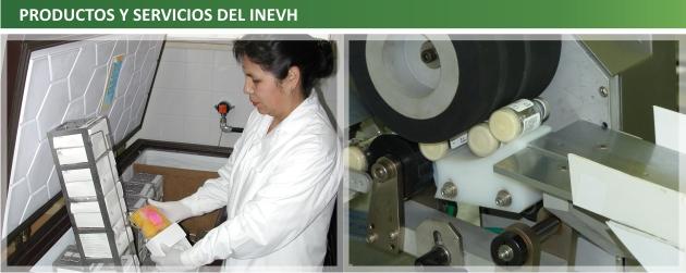 9 Productos y servicios del INEVH
