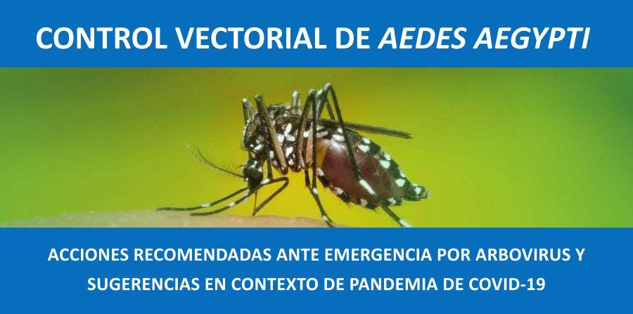 ACCIONES RECOMENDADAS ANTE EMERGENCIA POR ARBOVIRUS Y